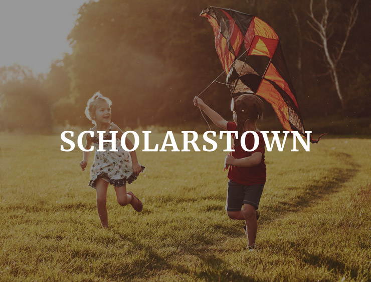 Ardstone Homes Future Development Scholarstown